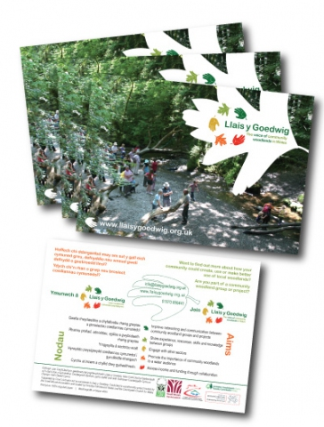 Promotional bilingual flier for community woodland organistation