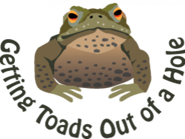 Toad conservation logo